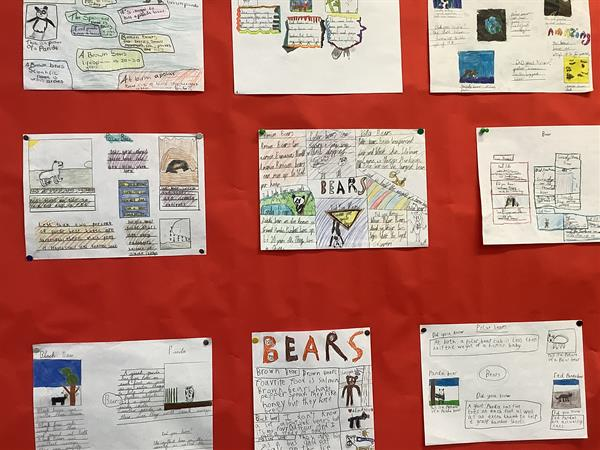 Displays around the school